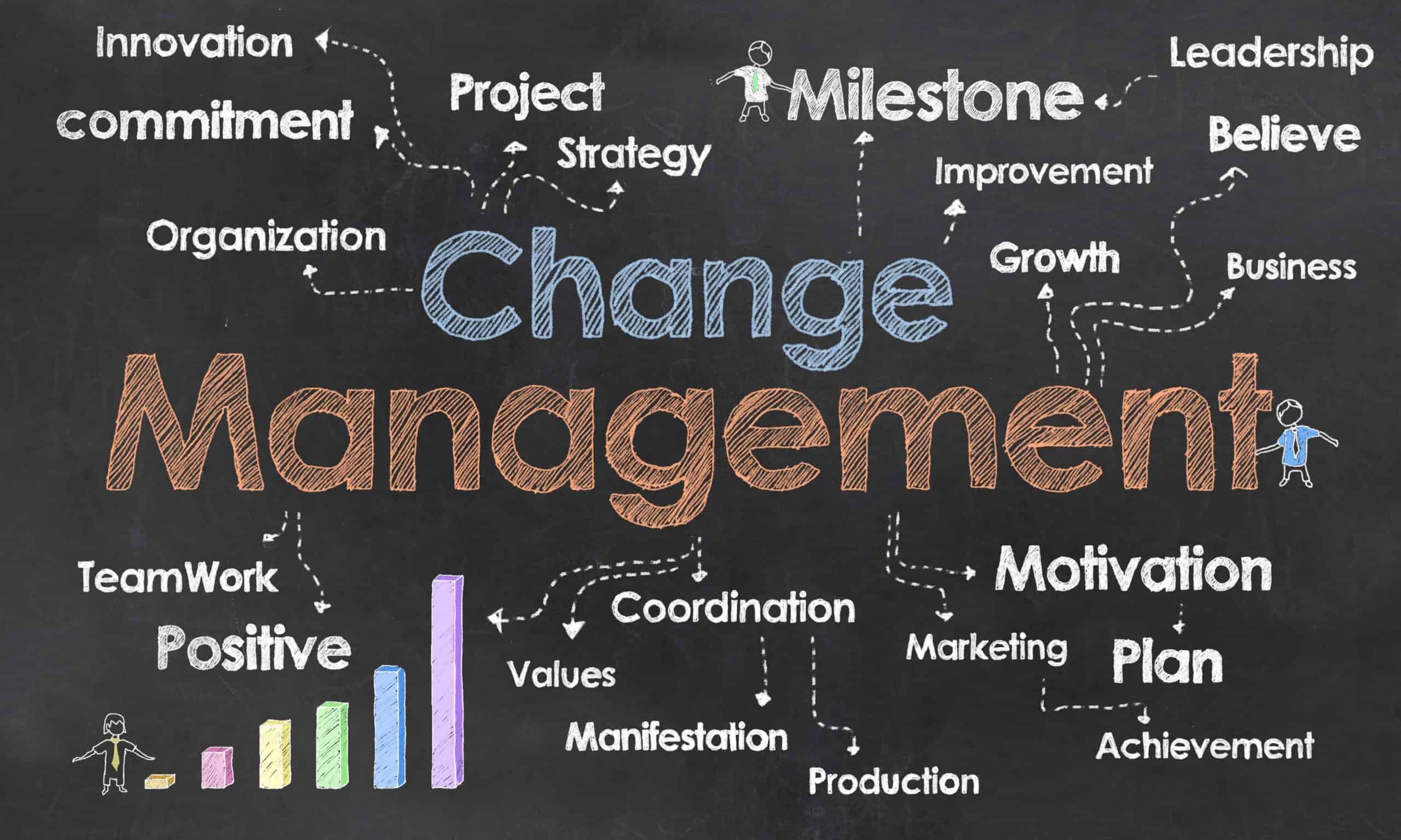 Change management - So you want change? How to avoid change management confusion, anxiety, resistance, frustration and false starts.