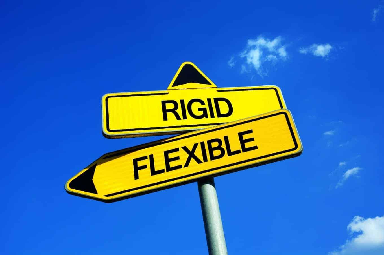 flexible - Flexible Technology Solutions vs 'Rigid' Technology Solutions